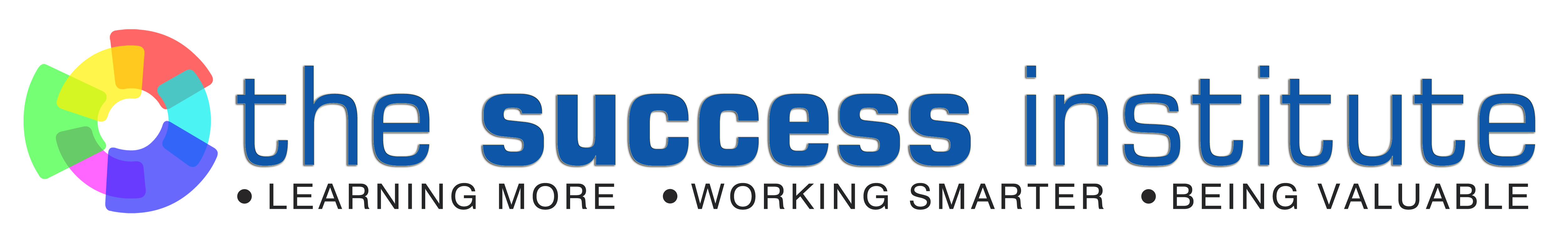 The Success Institute